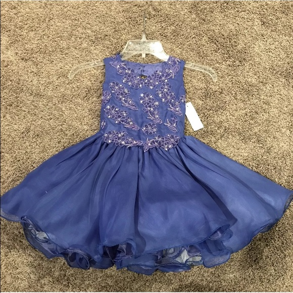 Robinson Other - Pageant Special Occasion Flower girl Dress NWT